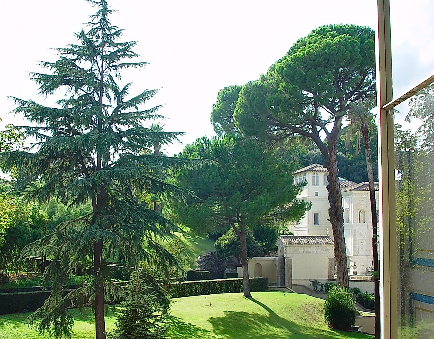 - View from a Vatican window. The stone pine tree is on the right. Note the distinctive umbrella shape. - - Italian Stone Pine Tree - Umbrella Pine - Pinus Pinea - - - art  - photography - by Tony Karp