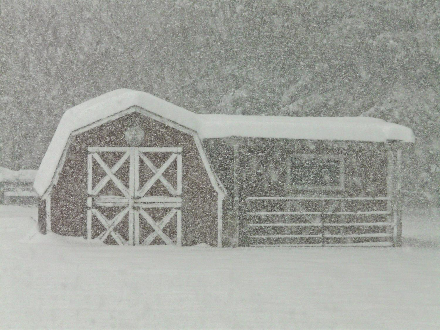 -  Panasonic DMC-FZ18 - Our poor little barn, buried in the snow. - - art  - photography - by Tony Karp