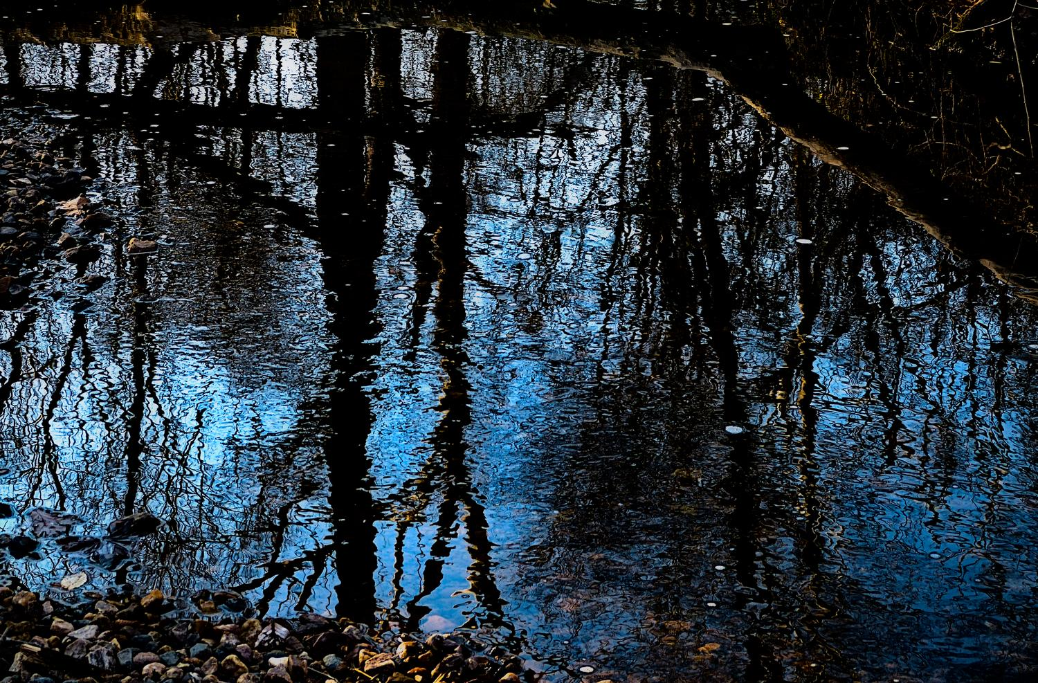 reflections - Trees in the stream <br>--- Click to see ORIGINAL --- - -  Panasonic DMC-FZ150 - post processing - Tony Karp, design, art, photography, techno-impressionist, techno-impressionism, aerial photography , drone , drones , dji , mavic pro , video , 3D printing - Books -