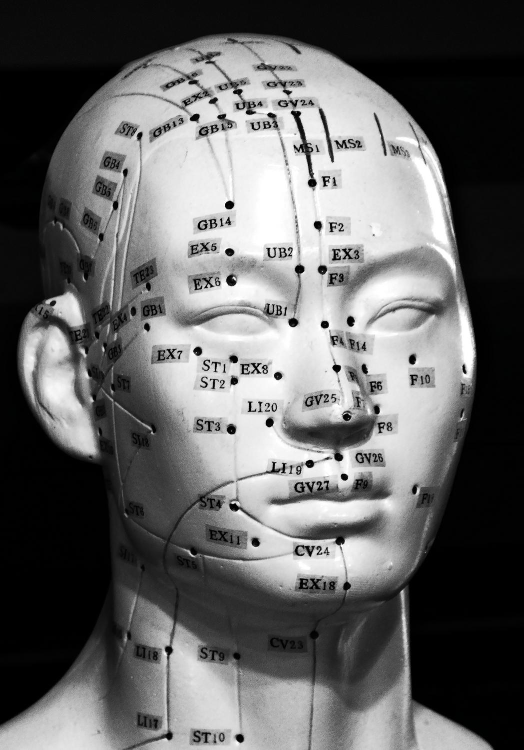 Acupuncture dummy -  A portrait of Pinhead - Panasonic DMC-ZS40, DMC-ZS50, DMC-LF1 - Tony Karp, design, art, photography, techno-impressionist, techno-impressionism, aerial photography , drone , drones , dji , mavic pro , video , 3D printing - Books -